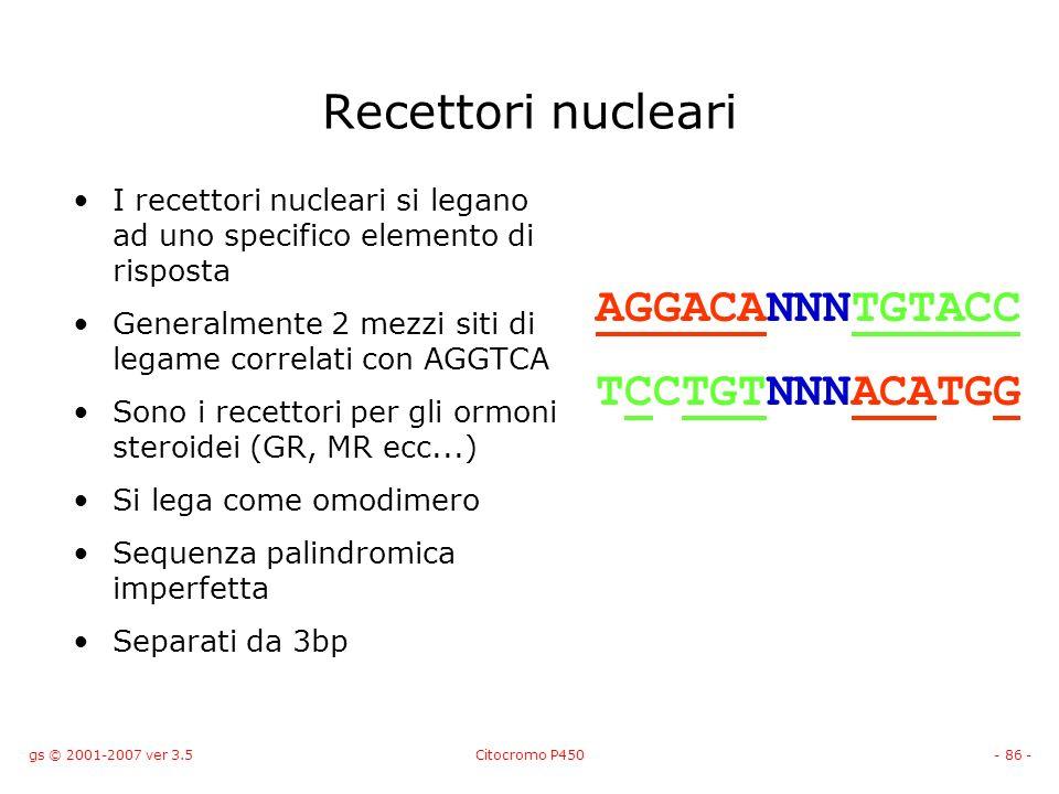 gs © 2001-2007 ver 3.5Citocromo P450- 86 - Recettori nucleari I recettori nucleari si legano ad uno specifico elemento di risposta Generalmente 2 mezz