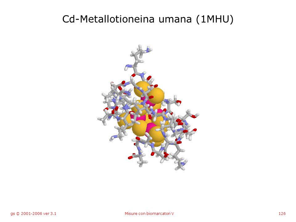 gs © 2001-2006 ver 3.1Misure con biomarcatori V126 Cd-Metallotioneina umana (1MHU)