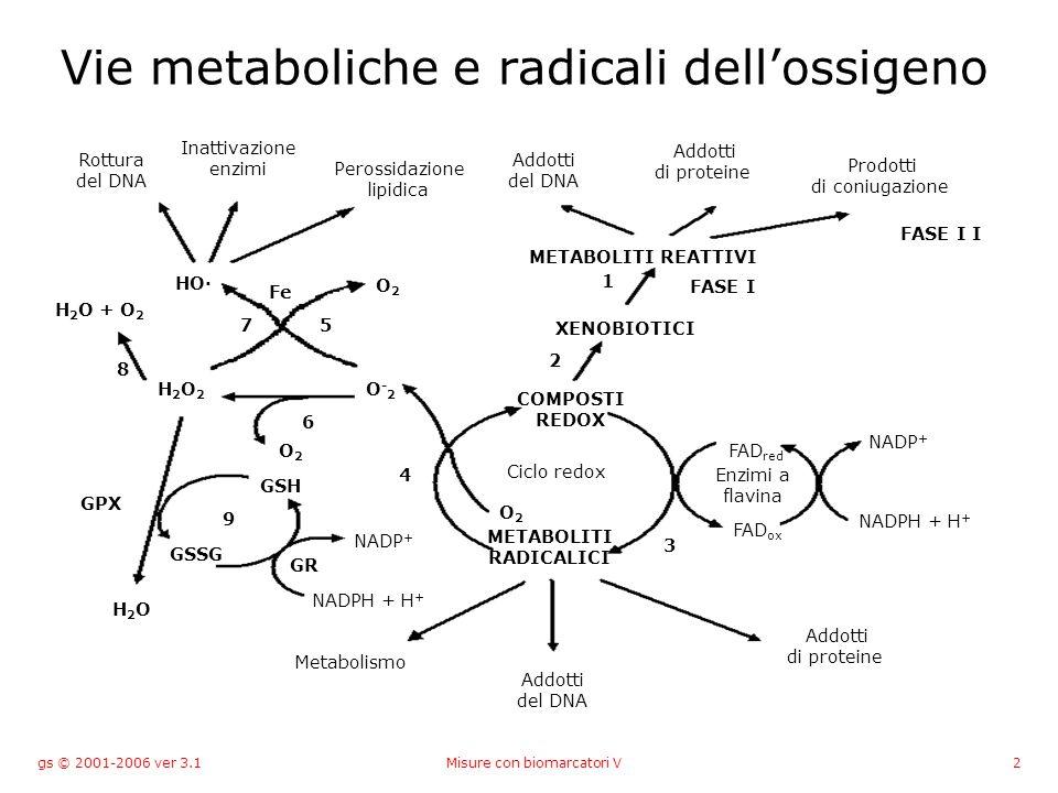 gs © 2001-2006 ver 3.1Misure con biomarcatori V93 Agenti anticolinesterasici Inizialmente sviluppati come arma chimica Gas nervini –Tabun, Sarin Insetticidi organofosfati –Malathion, parathion