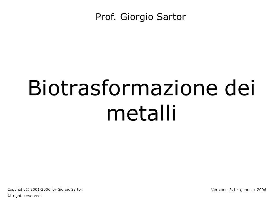 Biotrasformazione dei metalli Prof. Giorgio Sartor Copyright © 2001-2006 by Giorgio Sartor. All rights reserved. Versione 3.1 - gennaio 2006