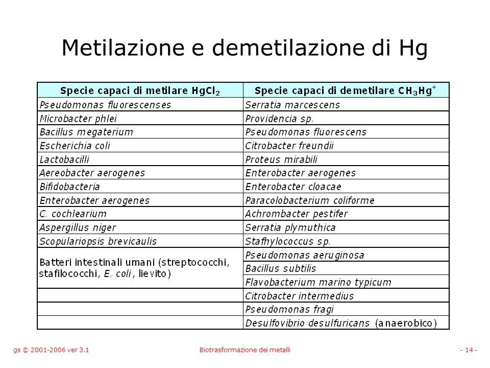 gs © 2001-2006 ver 3.1Biotrasformazione dei metalli- 14 - Metilazione e demetilazione di Hg