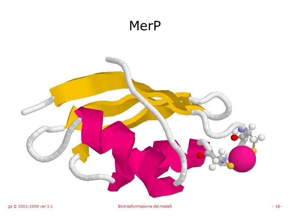 gs © 2001-2006 ver 3.1Biotrasformazione dei metalli- 18 - MerP
