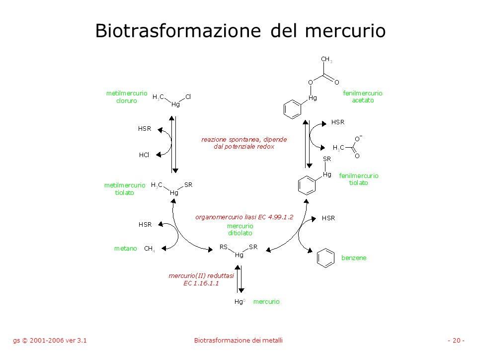 gs © 2001-2006 ver 3.1Biotrasformazione dei metalli- 20 - Biotrasformazione del mercurio