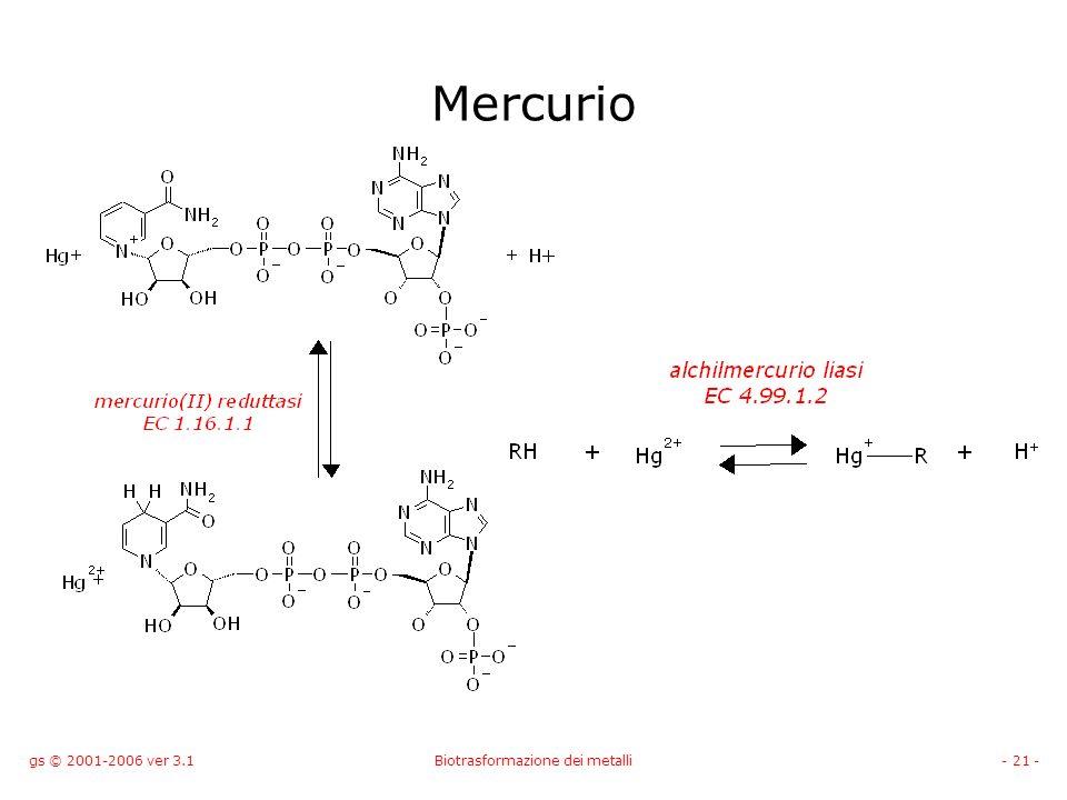 gs © 2001-2006 ver 3.1Biotrasformazione dei metalli- 21 - Mercurio