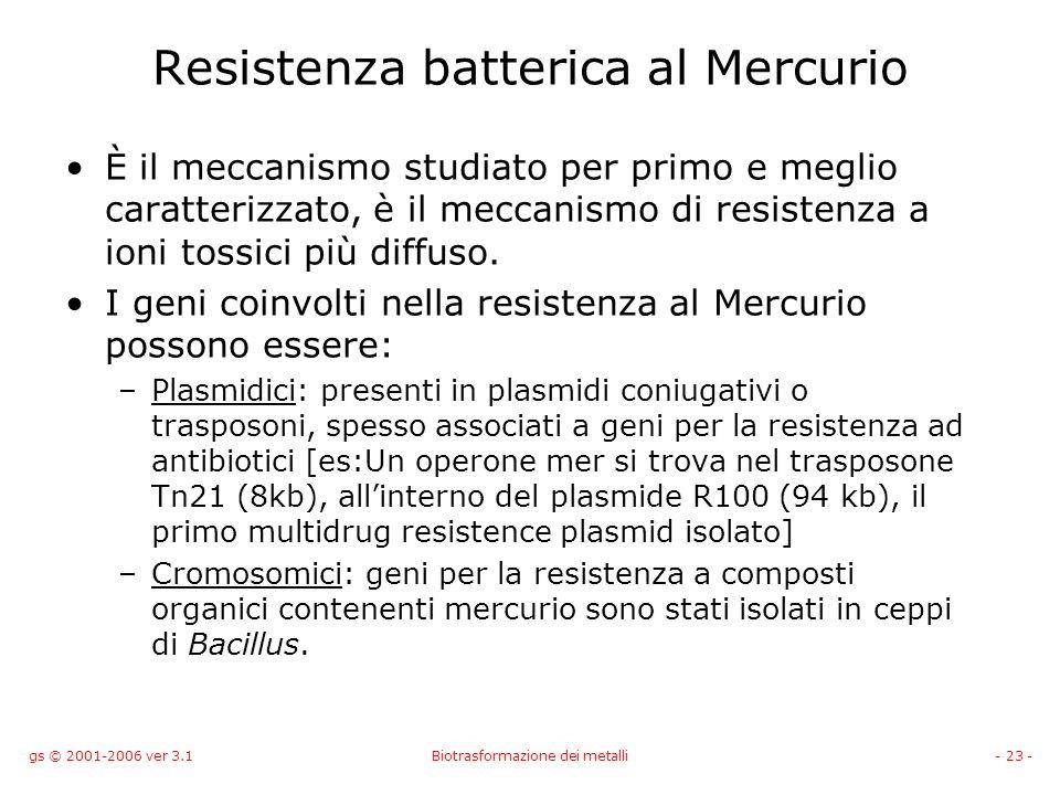 gs © 2001-2006 ver 3.1Biotrasformazione dei metalli- 23 - Resistenza batterica al Mercurio È il meccanismo studiato per primo e meglio caratterizzato,