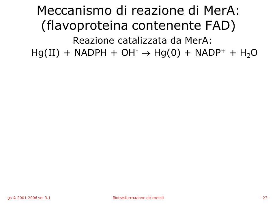 gs © 2001-2006 ver 3.1Biotrasformazione dei metalli- 27 - Meccanismo di reazione di MerA: (flavoproteina contenente FAD) Reazione catalizzata da MerA: