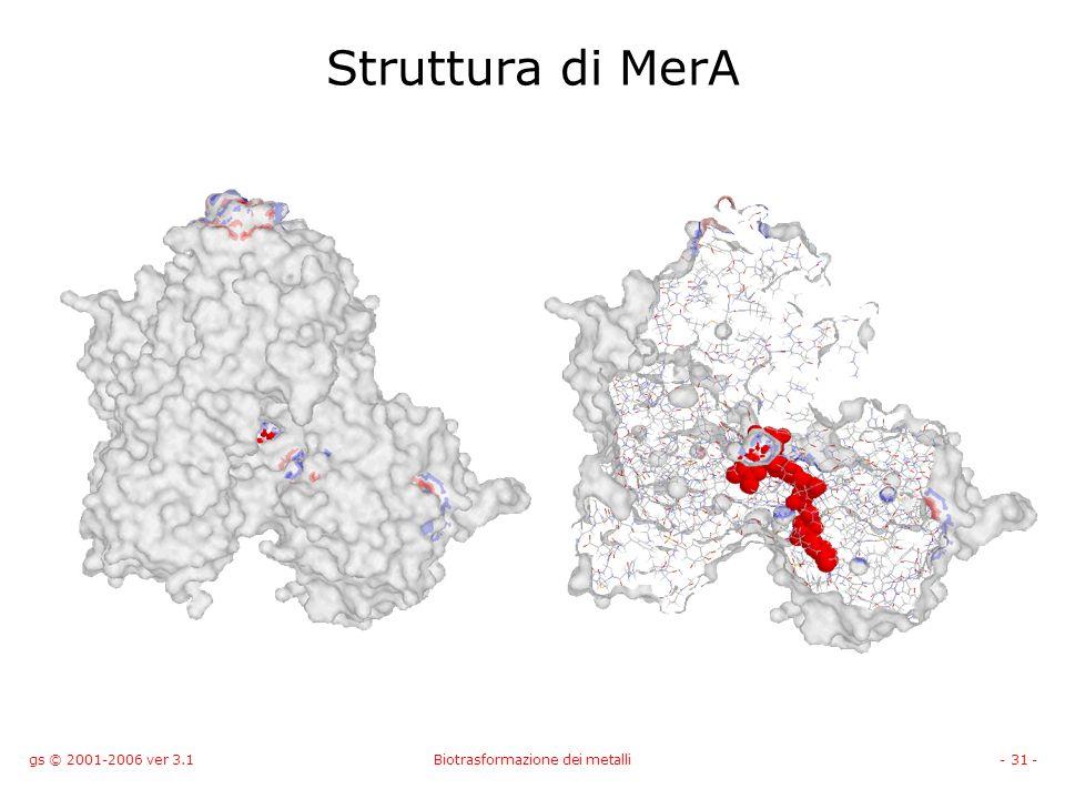gs © 2001-2006 ver 3.1Biotrasformazione dei metalli- 31 - Struttura di MerA