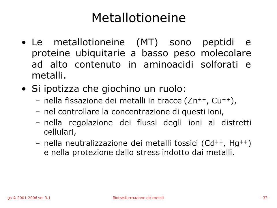 gs © 2001-2006 ver 3.1Biotrasformazione dei metalli- 37 - Metallotioneine Le metallotioneine (MT) sono peptidi e proteine ubiquitarie a basso peso mol