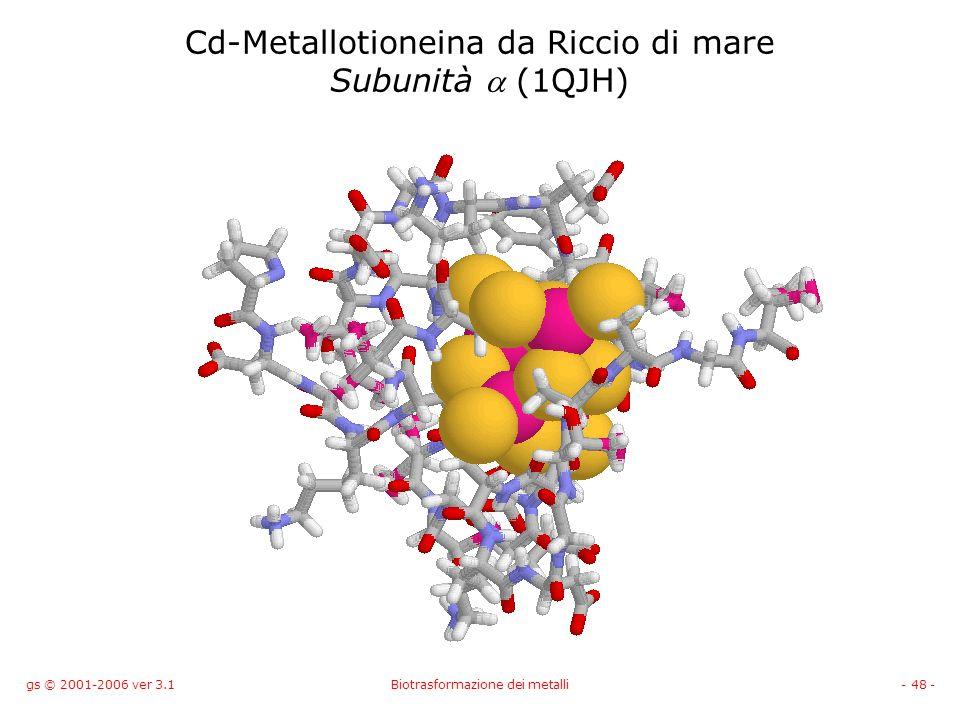 gs © 2001-2006 ver 3.1Biotrasformazione dei metalli- 48 - Cd-Metallotioneina da Riccio di mare Subunità (1QJH)