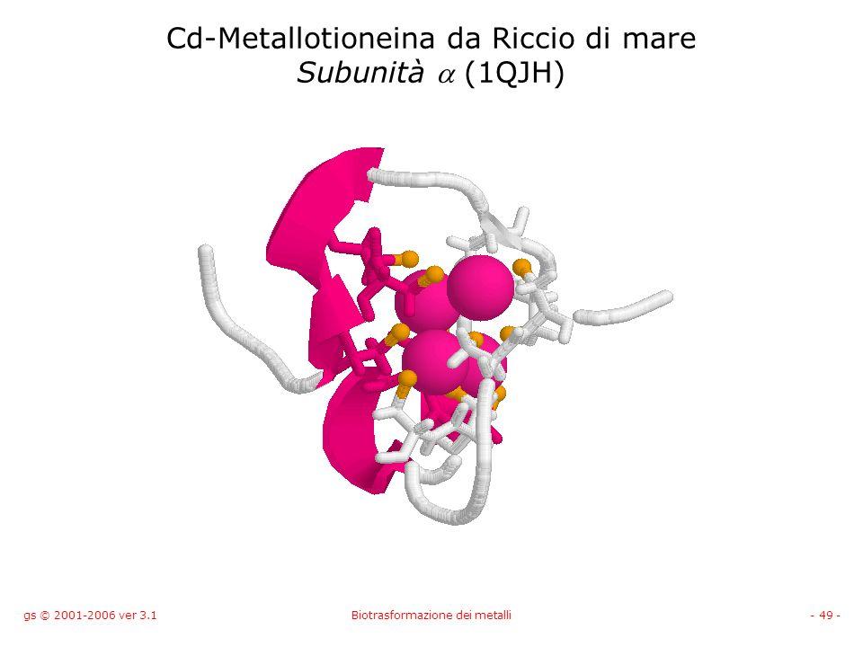 gs © 2001-2006 ver 3.1Biotrasformazione dei metalli- 49 - Cd-Metallotioneina da Riccio di mare Subunità (1QJH)