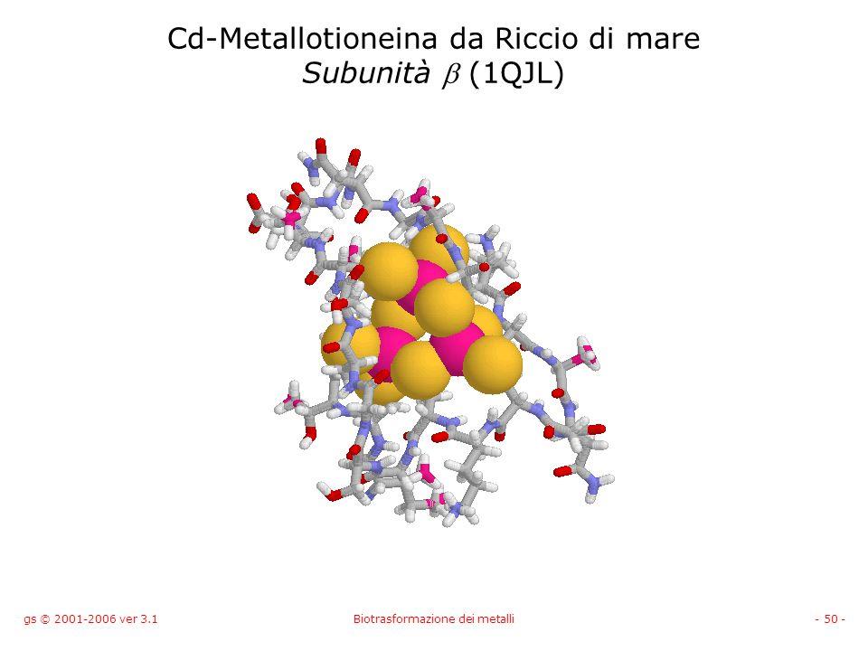 gs © 2001-2006 ver 3.1Biotrasformazione dei metalli- 50 - Cd-Metallotioneina da Riccio di mare Subunità (1QJL)