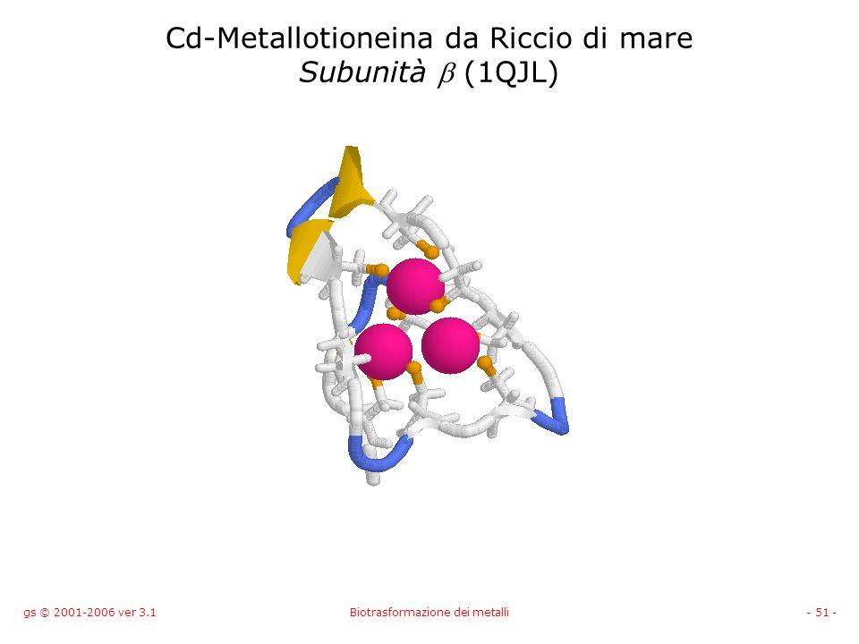 gs © 2001-2006 ver 3.1Biotrasformazione dei metalli- 51 - Cd-Metallotioneina da Riccio di mare Subunità (1QJL)