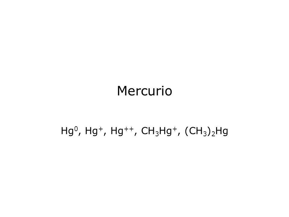 Mercurio Hg 0, Hg +, Hg ++, CH 3 Hg +, (CH 3 ) 2 Hg