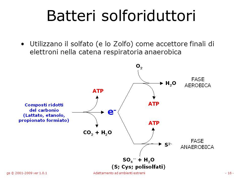gs © 2001-2009 ver 1.0.1Adattamento ad ambienti estremi- 16 - Batteri solforiduttori Utilizzano il solfato (e lo Zolfo) come accettore finali di elett