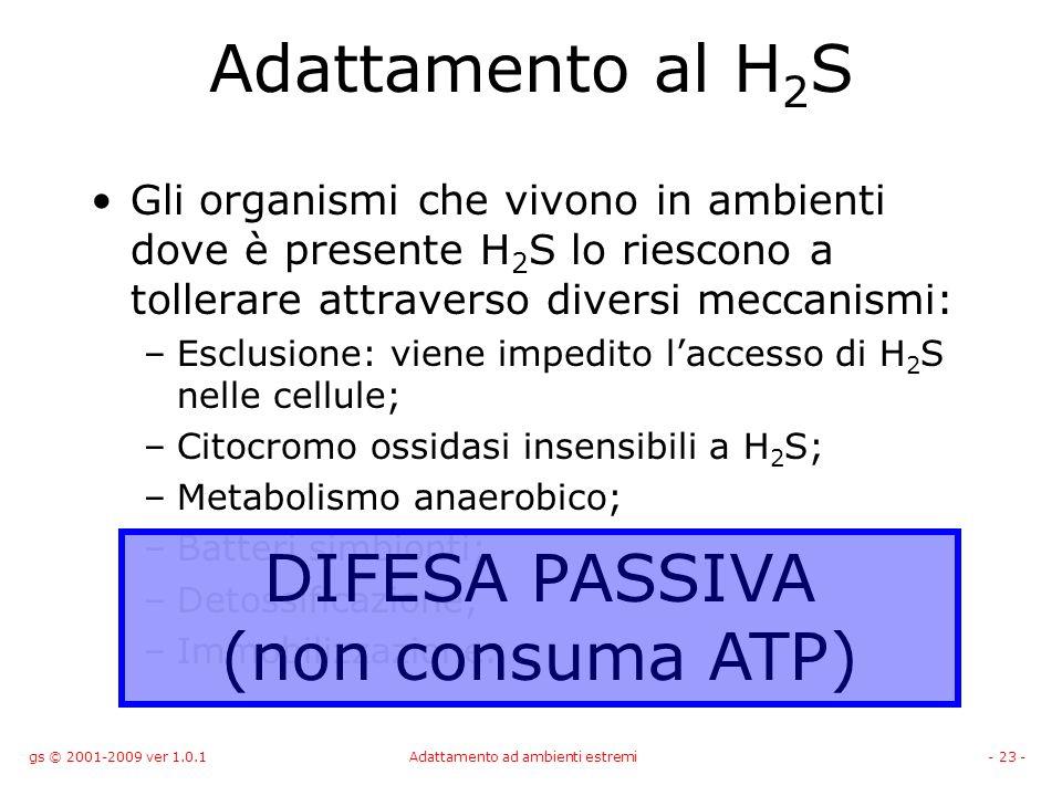 gs © 2001-2009 ver 1.0.1Adattamento ad ambienti estremi- 23 - Adattamento al H 2 S Gli organismi che vivono in ambienti dove è presente H 2 S lo riesc