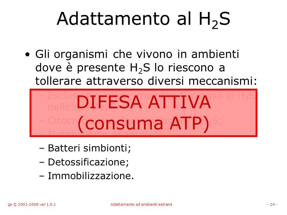 gs © 2001-2009 ver 1.0.1Adattamento ad ambienti estremi- 24 - Adattamento al H 2 S Gli organismi che vivono in ambienti dove è presente H 2 S lo riesc