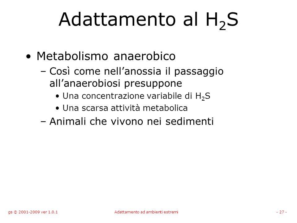gs © 2001-2009 ver 1.0.1Adattamento ad ambienti estremi- 27 - Adattamento al H 2 S Metabolismo anaerobico –Così come nellanossia il passaggio allanaer