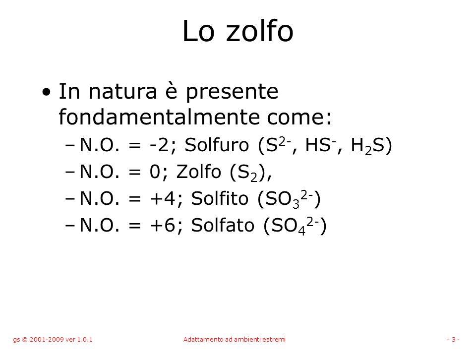 gs © 2001-2009 ver 1.0.1Adattamento ad ambienti estremi- 3 - Lo zolfo In natura è presente fondamentalmente come: –N.O. = -2; Solfuro (S 2-, HS -, H 2