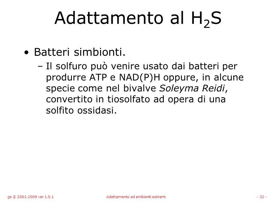gs © 2001-2009 ver 1.0.1Adattamento ad ambienti estremi- 32 - Adattamento al H 2 S Batteri simbionti. –Il solfuro può venire usato dai batteri per pro
