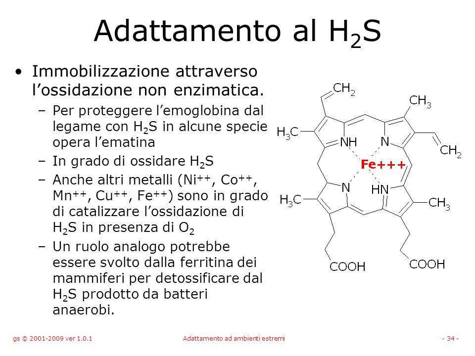 gs © 2001-2009 ver 1.0.1Adattamento ad ambienti estremi- 34 - Adattamento al H 2 S Immobilizzazione attraverso lossidazione non enzimatica. –Per prote