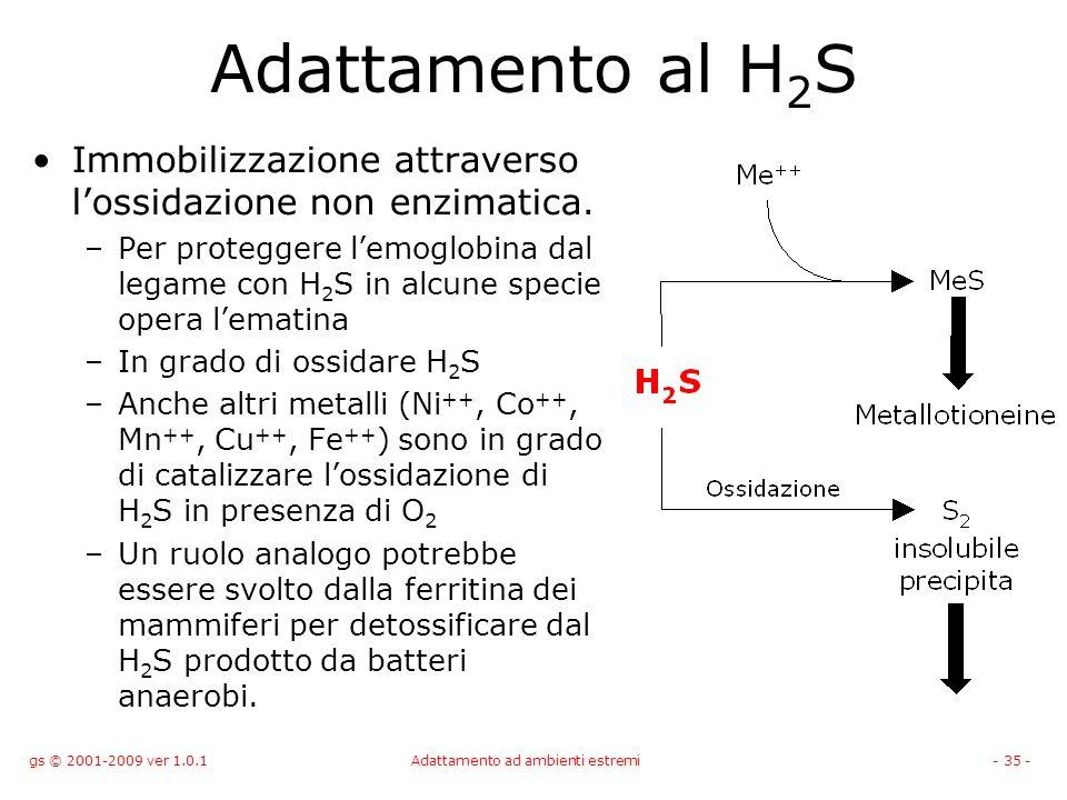 gs © 2001-2009 ver 1.0.1Adattamento ad ambienti estremi- 35 - Adattamento al H 2 S Immobilizzazione attraverso lossidazione non enzimatica. –Per prote