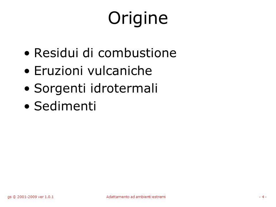 gs © 2001-2009 ver 1.0.1Adattamento ad ambienti estremi- 4 - Origine Residui di combustione Eruzioni vulcaniche Sorgenti idrotermali Sedimenti