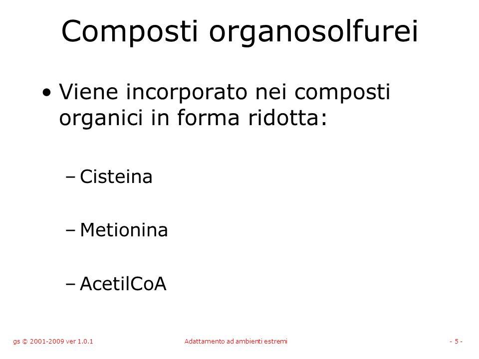 gs © 2001-2009 ver 1.0.1Adattamento ad ambienti estremi- 5 - Composti organosolfurei Viene incorporato nei composti organici in forma ridotta: –Cistei