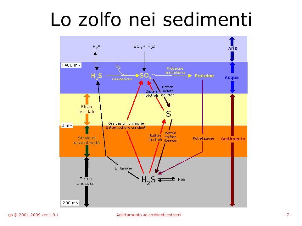 gs © 2001-2009 ver 1.0.1Adattamento ad ambienti estremi- 7 - Lo zolfo nei sedimenti