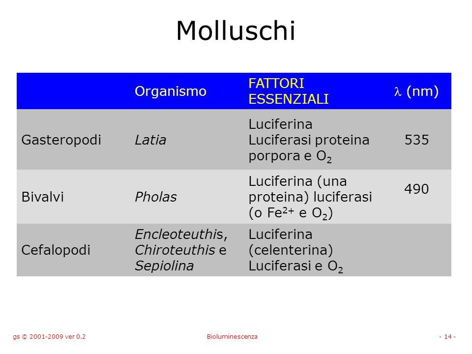 gs © 2001-2009 ver 0.2Bioluminescenza- 14 - Molluschi Organismo FATTORI ESSENZIALI (nm) GasteropodiLatia Luciferina Luciferasi proteina porpora e O 2 535 BivalviPholas Luciferina (una proteina) luciferasi (o Fe 2+ e O 2 ) 490 Cefalopodi Encleoteuthis, Chiroteuthis e Sepiolina Luciferina (celenterina) Luciferasi e O 2