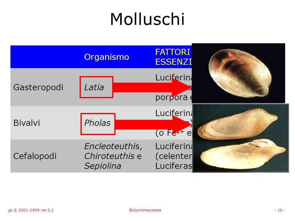 gs © 2001-2009 ver 0.2Bioluminescenza- 16 - Molluschi Organismo FATTORI ESSENZIALI l (nm) GasteropodiLatia Luciferina Luciferasi proteina porpora e O 2 535 BivalviPholas Luciferina (una proteina) luciferasi (o Fe 2+ e O 2 ) 490 Cefalopodi Encleoteuthis, Chiroteuthis e Sepiolina Luciferina (celenterina) Luciferasi e O 2