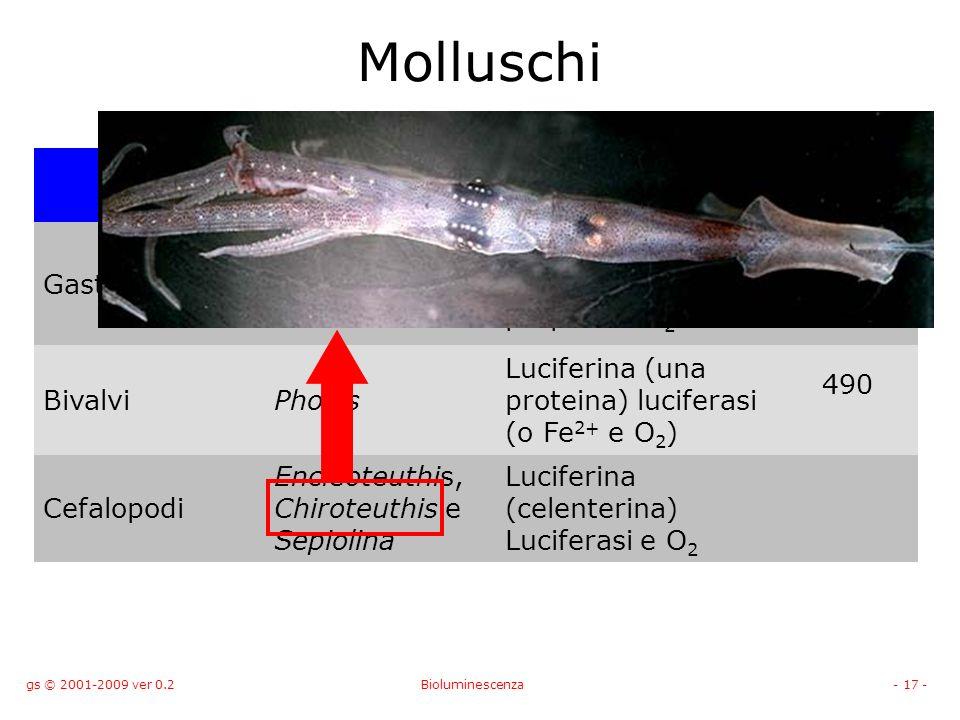 gs © 2001-2009 ver 0.2Bioluminescenza- 17 - Molluschi Organismo FATTORI ESSENZIALI l (nm) GasteropodiLatia Luciferina Luciferasi proteina porpora e O 2 535 BivalviPholas Luciferina (una proteina) luciferasi (o Fe 2+ e O 2 ) 490 Cefalopodi Encleoteuthis, Chiroteuthis e Sepiolina Luciferina (celenterina) Luciferasi e O 2