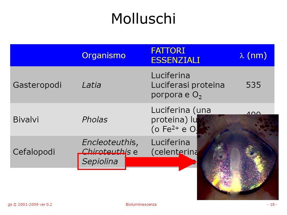 gs © 2001-2009 ver 0.2Bioluminescenza- 18 - Molluschi Organismo FATTORI ESSENZIALI (nm) GasteropodiLatia Luciferina Luciferasi proteina porpora e O 2 535 BivalviPholas Luciferina (una proteina) luciferasi (o Fe 2+ e O 2 ) 490 Cefalopodi Encleoteuthis, Chiroteuthis e Sepiolina Luciferina (celenterina) Luciferasi e O 2