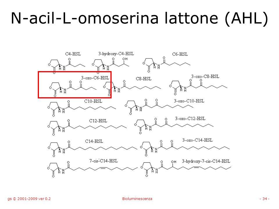 gs © 2001-2009 ver 0.2Bioluminescenza- 34 - N-acil-L-omoserina lattone (AHL)