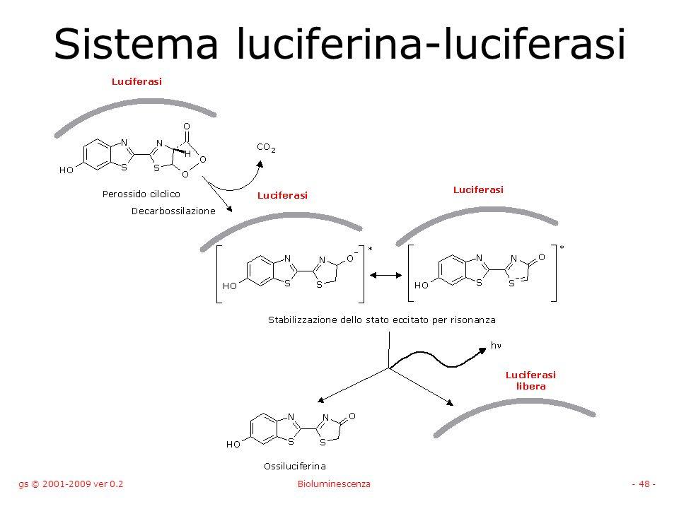 gs © 2001-2009 ver 0.2Bioluminescenza- 48 - Sistema luciferina-luciferasi