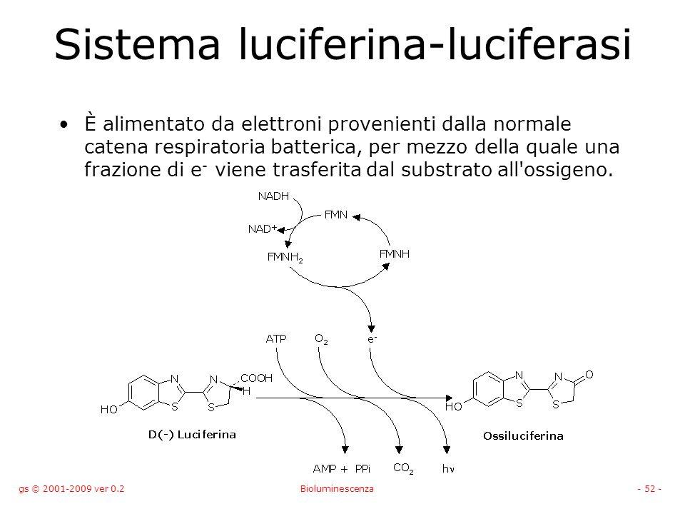 gs © 2001-2009 ver 0.2Bioluminescenza- 52 - Sistema luciferina-luciferasi È alimentato da elettroni provenienti dalla normale catena respiratoria batterica, per mezzo della quale una frazione di e - viene trasferita dal substrato all ossigeno.