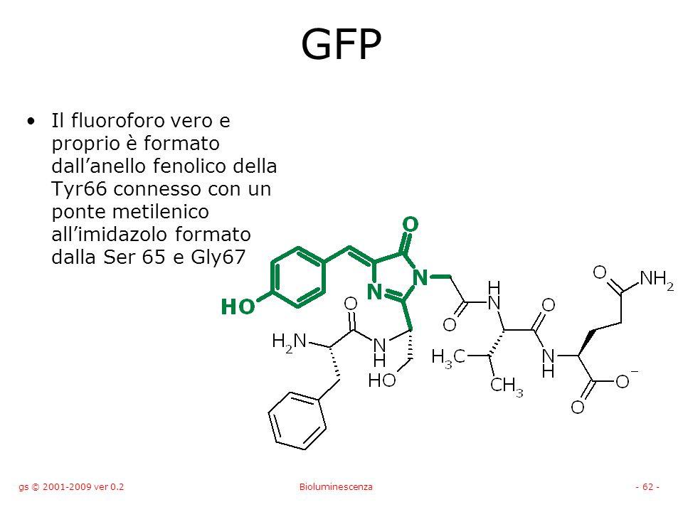 gs © 2001-2009 ver 0.2Bioluminescenza- 62 - GFP Il fluoroforo vero e proprio è formato dallanello fenolico della Tyr66 connesso con un ponte metilenico allimidazolo formato dalla Ser 65 e Gly67