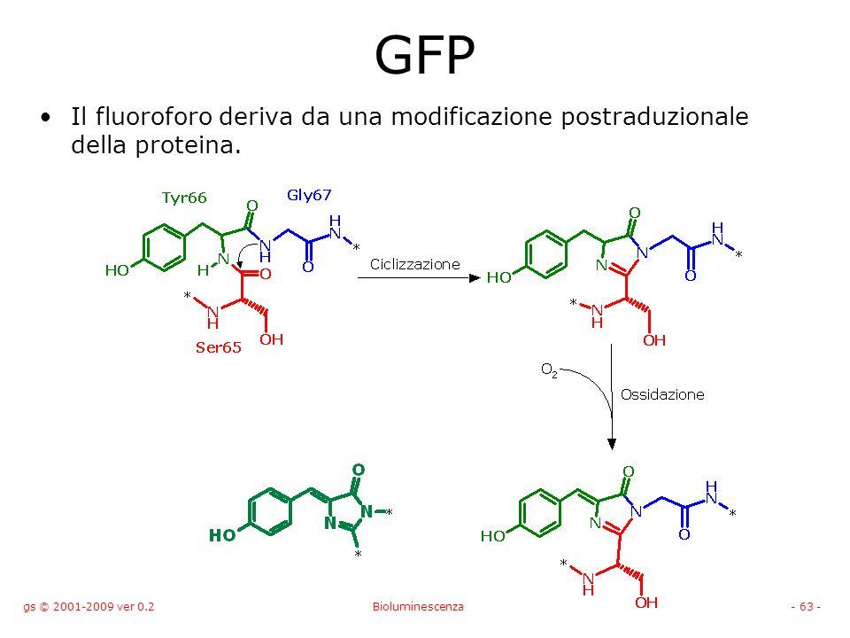 gs © 2001-2009 ver 0.2Bioluminescenza- 63 - GFP Il fluoroforo deriva da una modificazione postraduzionale della proteina.