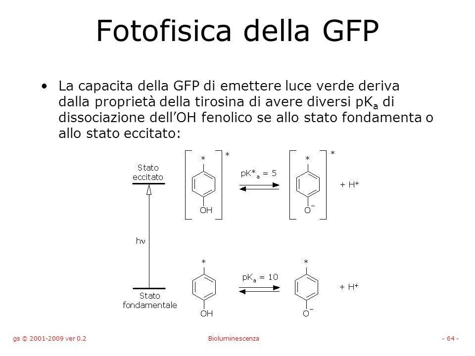 gs © 2001-2009 ver 0.2Bioluminescenza- 64 - Fotofisica della GFP La capacita della GFP di emettere luce verde deriva dalla proprietà della tirosina di avere diversi pK a di dissociazione dellOH fenolico se allo stato fondamenta o allo stato eccitato: