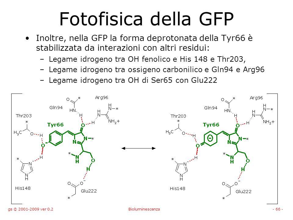 gs © 2001-2009 ver 0.2Bioluminescenza- 66 - Fotofisica della GFP Inoltre, nella GFP la forma deprotonata della Tyr66 è stabilizzata da interazioni con altri residui: –Legame idrogeno tra OH fenolico e His 148 e Thr203, –Legame idrogeno tra ossigeno carbonilico e Gln94 e Arg96 –Legame idrogeno tra OH di Ser65 con Glu222