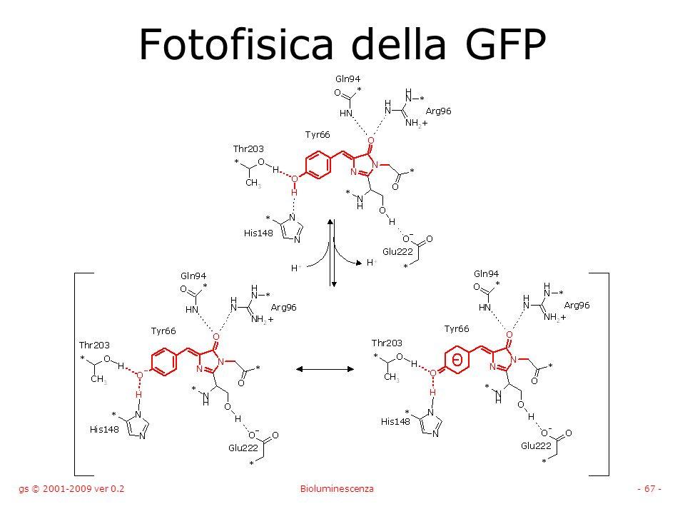 gs © 2001-2009 ver 0.2Bioluminescenza- 67 - Fotofisica della GFP