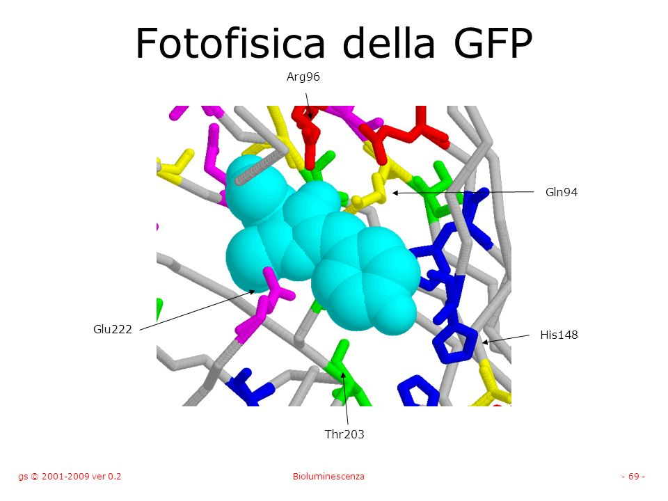 gs © 2001-2009 ver 0.2Bioluminescenza- 69 - Fotofisica della GFP His148 Glu222 Gln94 Thr203 Arg96