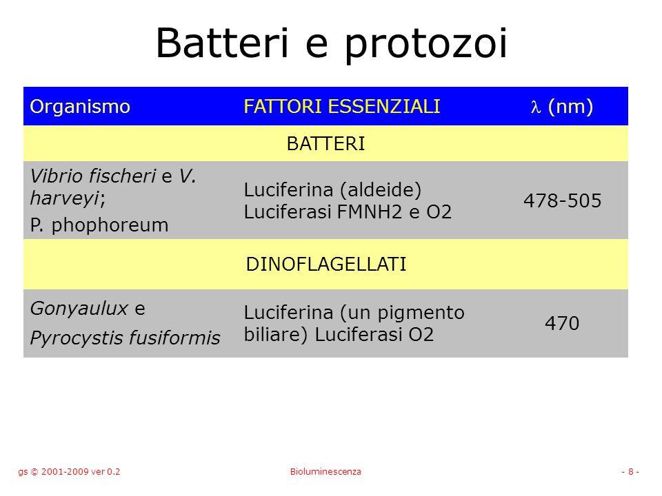 gs © 2001-2009 ver 0.2Bioluminescenza- 8 - Batteri e protozoi OrganismoFATTORI ESSENZIALI (nm) BATTERI Vibrio fischeri e V.