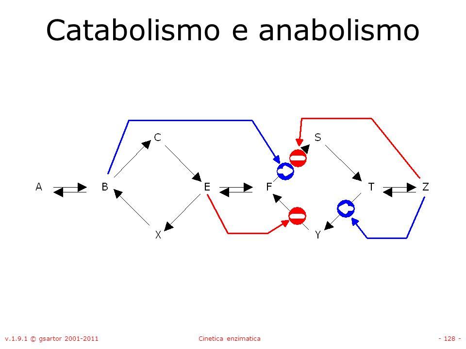 v.1.9.1 © gsartor 2001-2011Cinetica enzimatica- 128 - Catabolismo e anabolismo