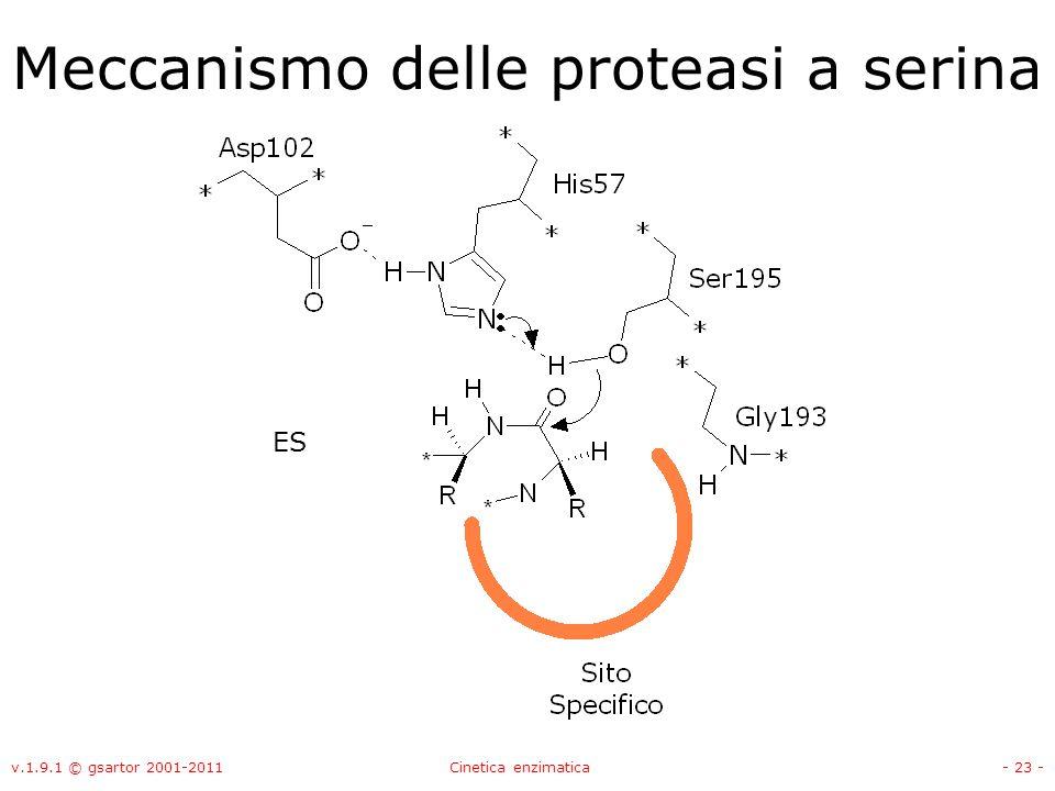 v.1.9.1 © gsartor 2001-2011Cinetica enzimatica- 23 - Meccanismo delle proteasi a serina ES