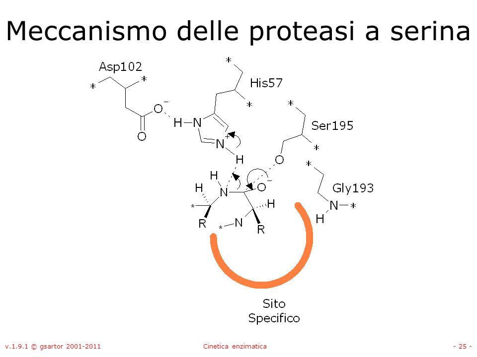 v.1.9.1 © gsartor 2001-2011Cinetica enzimatica- 25 - Meccanismo delle proteasi a serina