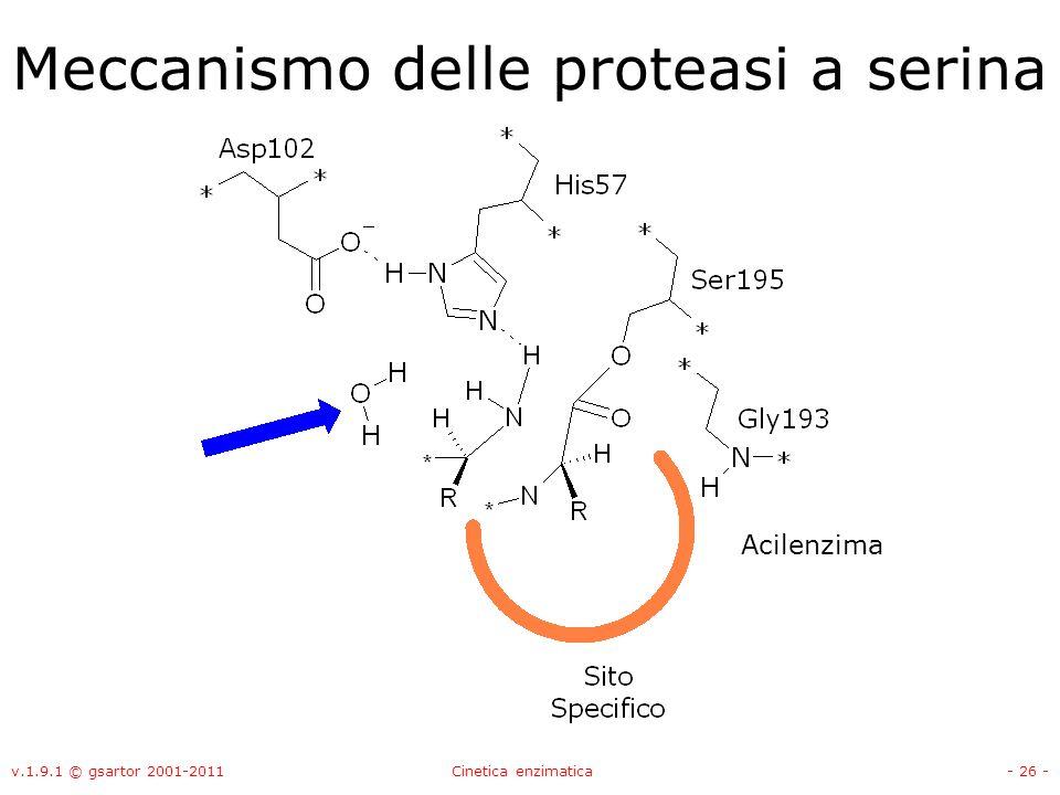 v.1.9.1 © gsartor 2001-2011Cinetica enzimatica- 26 - Meccanismo delle proteasi a serina Acilenzima