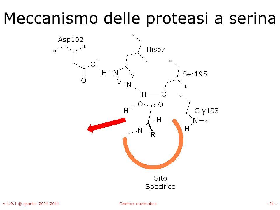 v.1.9.1 © gsartor 2001-2011Cinetica enzimatica- 31 - Meccanismo delle proteasi a serina