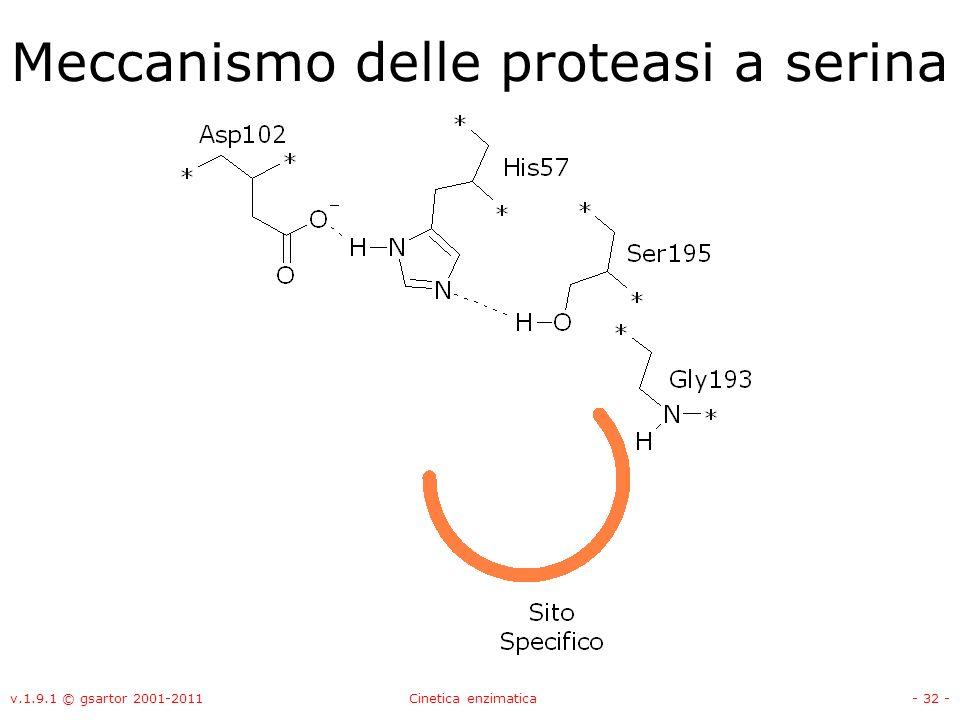 v.1.9.1 © gsartor 2001-2011Cinetica enzimatica- 32 - Meccanismo delle proteasi a serina