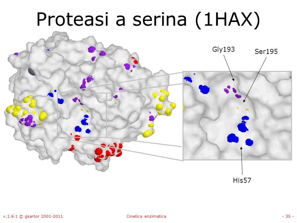 v.1.9.1 © gsartor 2001-2011Cinetica enzimatica- 35 - Proteasi a serina (1HAX) Ser195 Gly193 His57