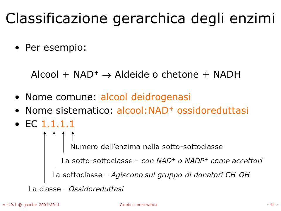 v.1.9.1 © gsartor 2001-2011Cinetica enzimatica- 41 - Classificazione gerarchica degli enzimi Per esempio: Alcool + NAD + Aldeide o chetone + NADH Nome
